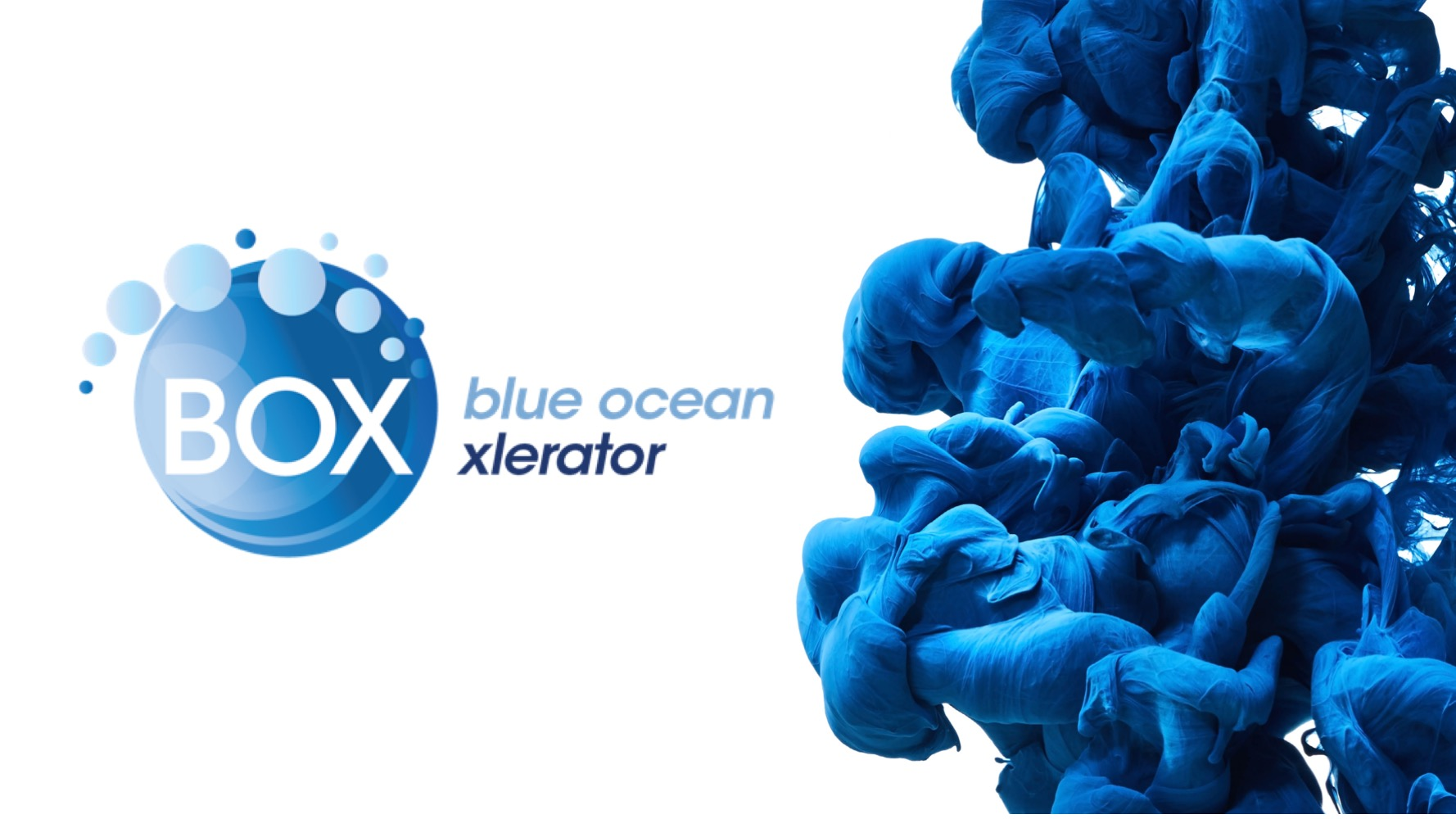 BOX (Blue Ocean XLerator) Is A Private Incubator/accelerator Owned By  Entrepreneurs Who Invest In Sustainable Innovations That Have It In Them To  Make The ...